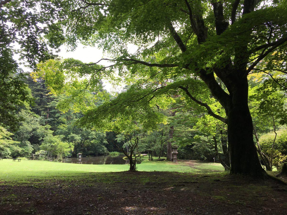 栃木県日光市の松屋敷さまの、令和元年の庭園公開が始まります